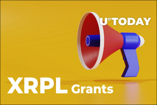 سرمایهگذاری شرکت RippleX بر راهکارهای توسعه شبکه ریپل