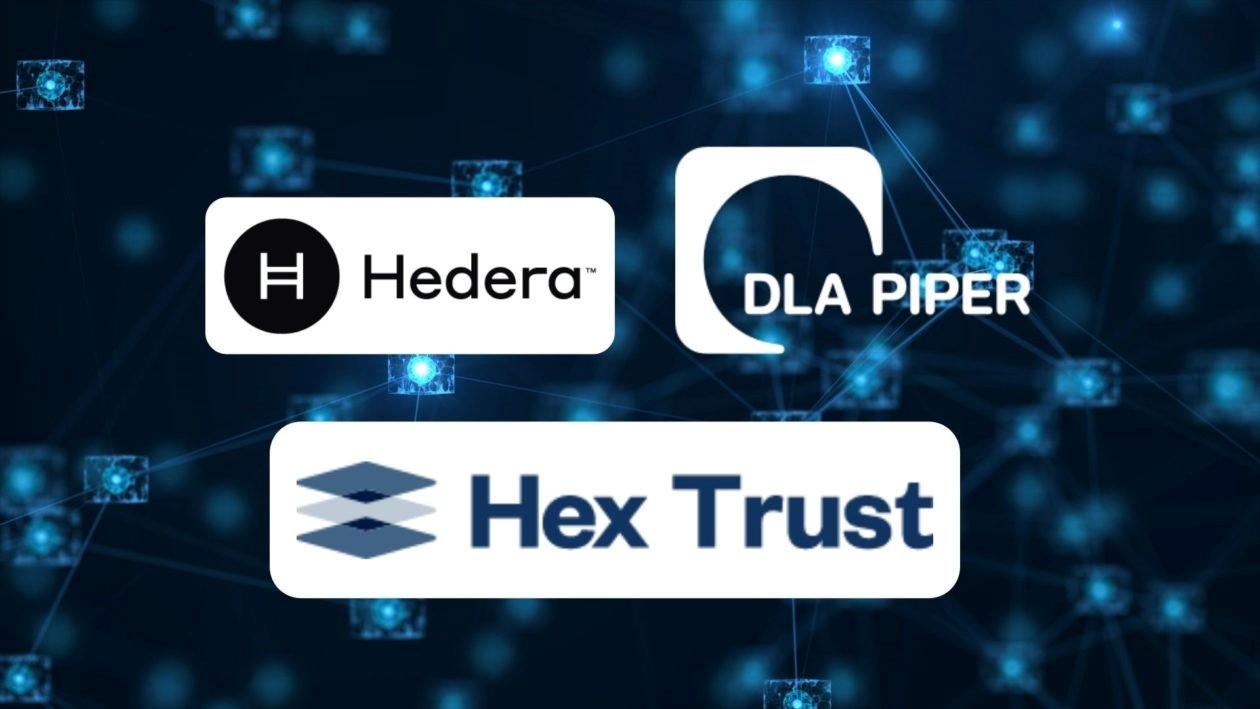 ادغام Hedera Hashgraph با Hex Trust